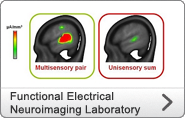 Functional Electrical Neuroimaging Laboratory