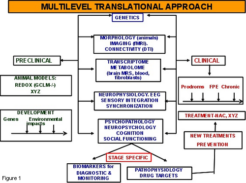 Multilevel translational approach