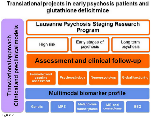 Translational projects in early psychosis patients